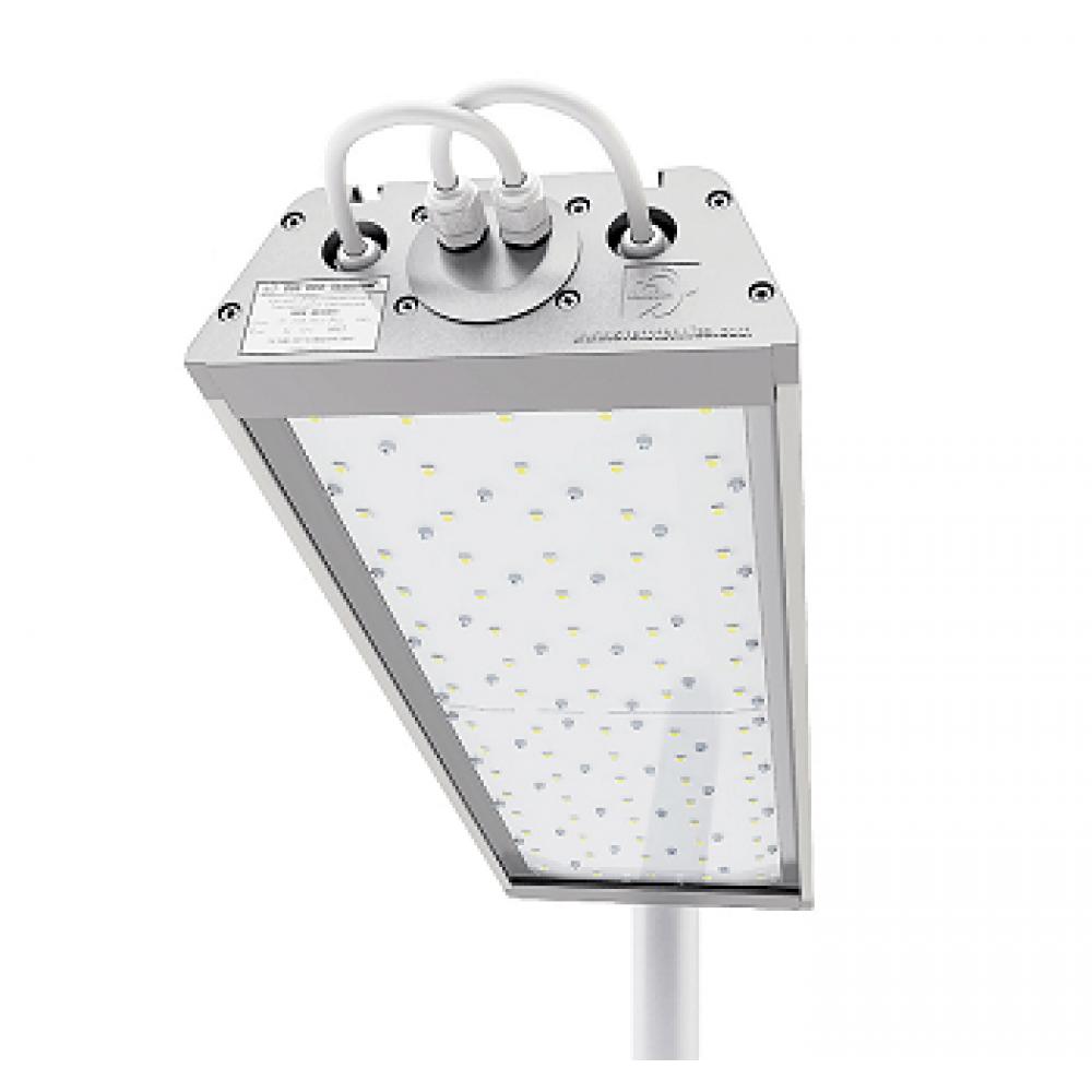 Светодиодный светильник уличный ДиУС-80
